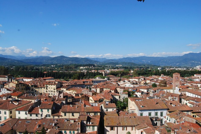 Lucca from Tower 5