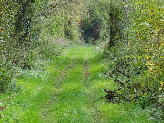 Save this beautiful path on the lovely Barrow