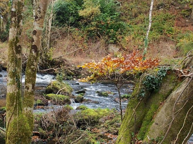 Mountain River, Borris