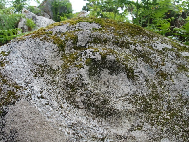 Kilcarrig Rock Art