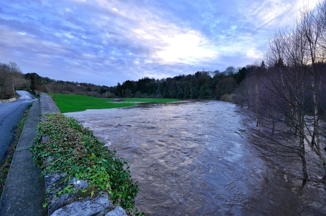 River Slaney at Kilcarry
