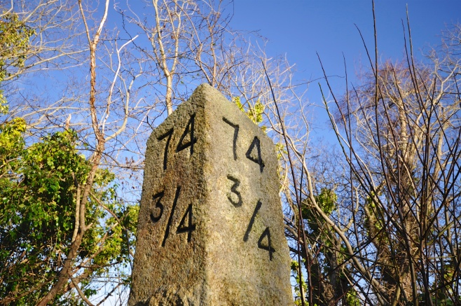 Milestone on old railway line through Borris?