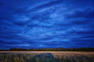 Oak Park at dusk