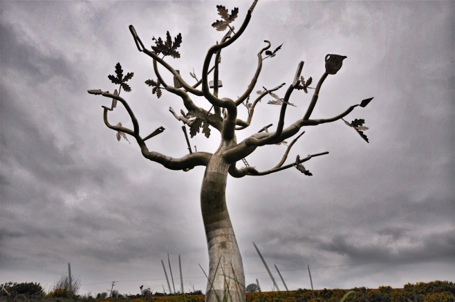 11-1-money-doesnt-grow-on-trees-county-wexford