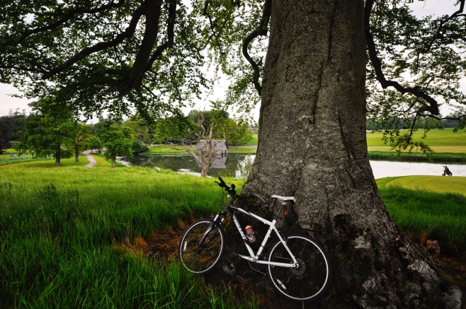 17-2-carton-house-grounds-maynooth-county-kildare