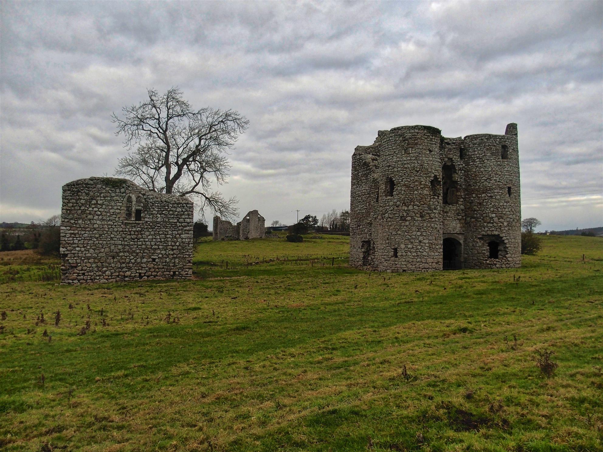 Ballyloughan Castle, CountyCarlow