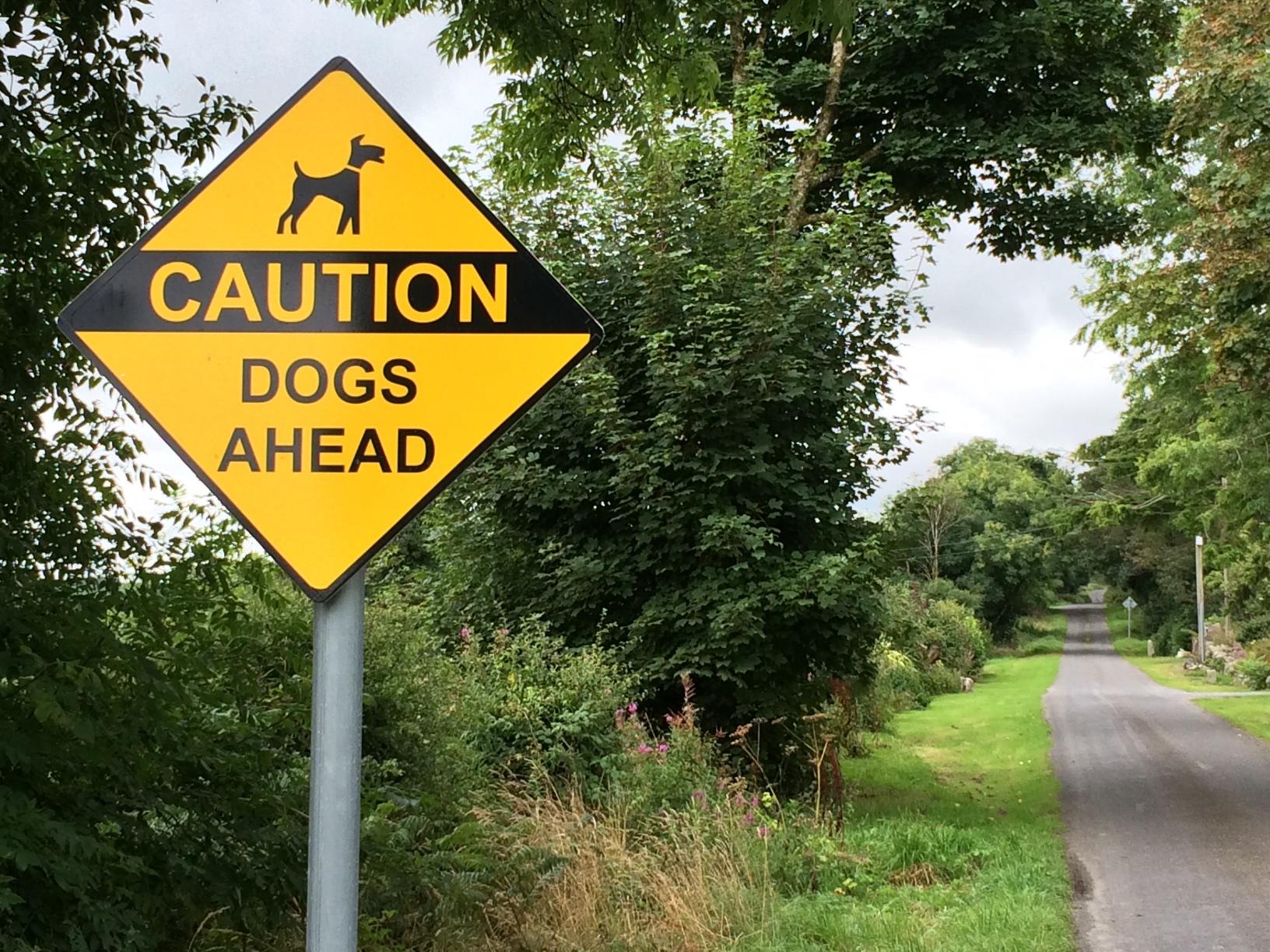 28-2-warning-dogs-ahead-county-kilkenny
