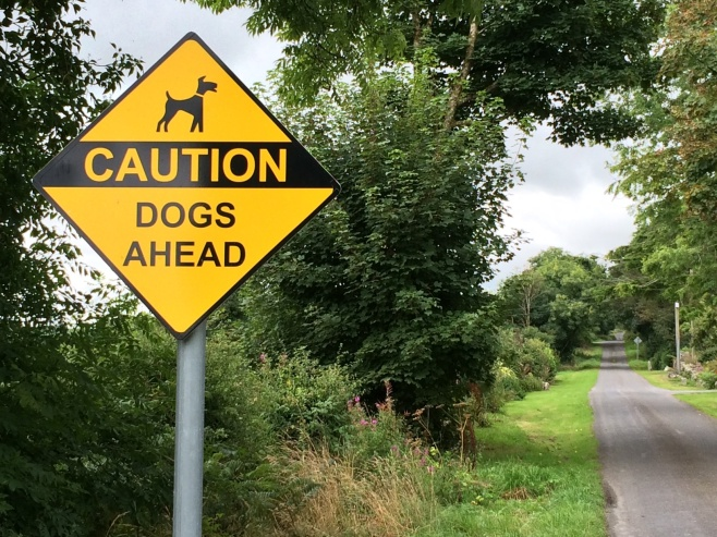 28-2-warning-dogs-ahead-county-kilkenny