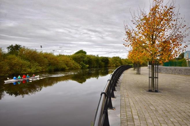 Autumn Rowers